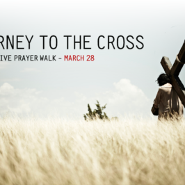 Journey To The Cross – All Stations